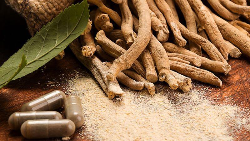 Shagandha Ashwagandha Root Extract 2.5% by Sabinsa meets USP