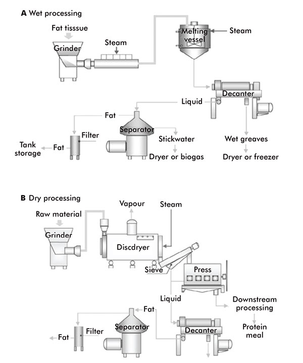 Lipid lore: Oils, fats and waxes