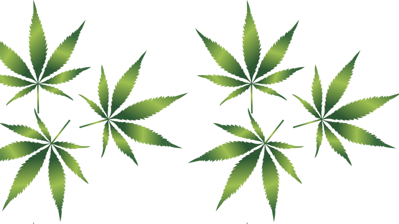 What Is The Best Solvent For Hemp Extraction?